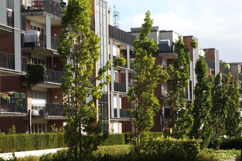Parkgarten mit Bäumen